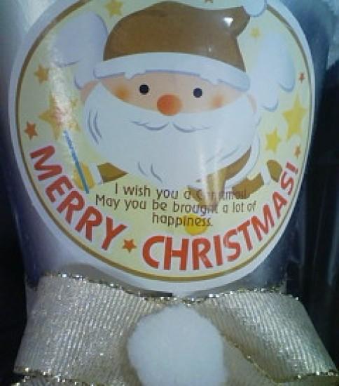 もうすぐクリスマス・・・。