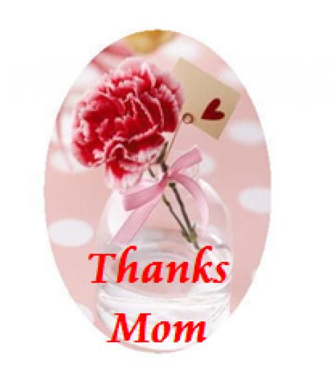 お母さんに感謝の気持ちを~母の日キャンペーン~
