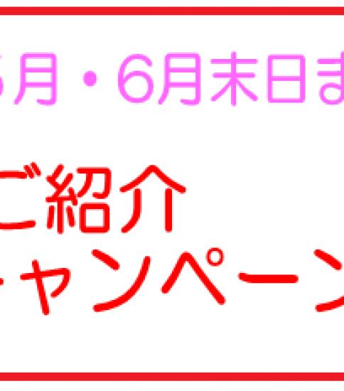 ご紹介キャンペーン~6月末日まで
